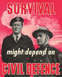 Cold War Survival poster