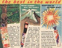 Wessex Fireworks